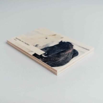 foto en madera de chopo